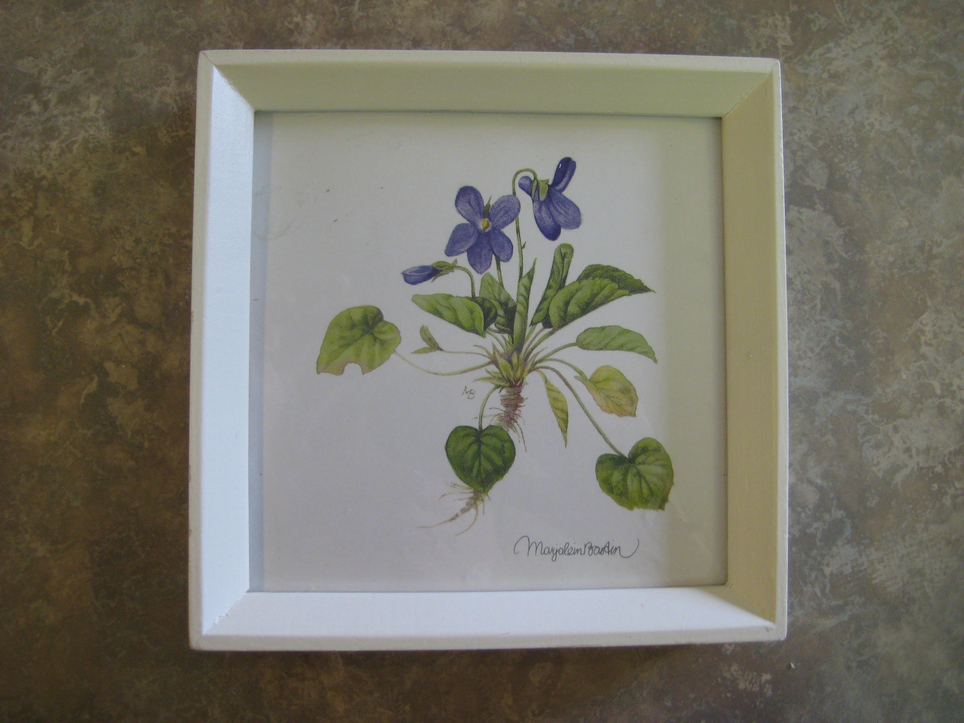 DIY Butterfly Shadowbox « Room to Think